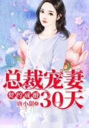 总裁宠妻30天言晚霍黎辰 作者唐小甜完整在线阅读