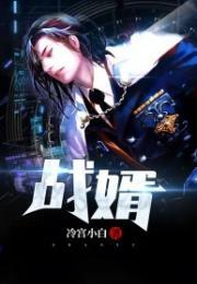 《战婿叶凡秦岚》【完结版】+全文在线阅读